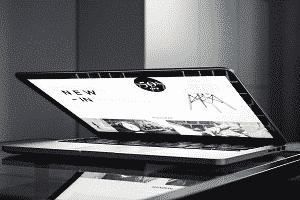 Highest speed web hosting and comprehensive website management